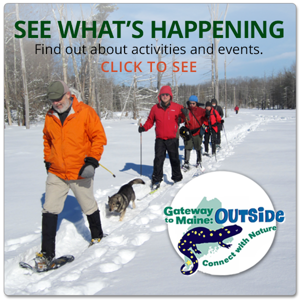 See What's Happening: find out about activities and events.