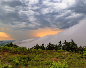Fog rolling in on top of Mt. A, winner of the Wildscapes Award. Credit: Chuck Maranhas