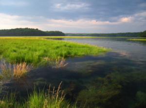 View from Brave Boat Headwaters Preserve. Credit: Kittery Land Trust